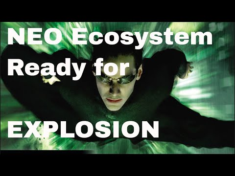 Why NEO's Ecosystem will EXPLODE! | Coupit Upates!