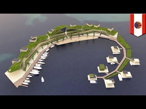 Proyek pulau mengapung menjanjikan pemerintahan sendiri, cryptocurrency – TomoNews