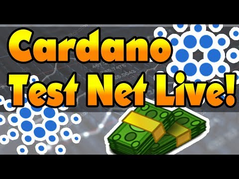 Cardano Test Net Goes Live! Why Cardano is Undervalued! Test Net News Explained!