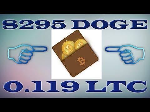 Намайнил 8295 DOGE и 0.119 LTC | Выплаты – INSTANT | BONUSSS