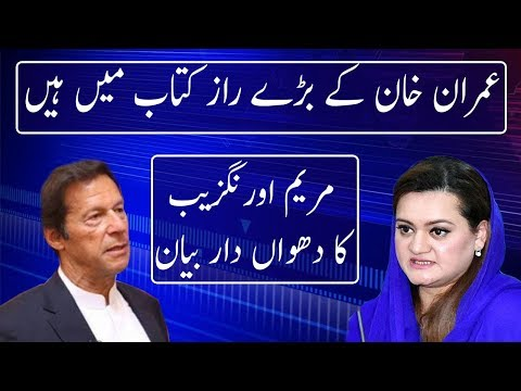 Maryam Aurangzeb Lashes Out on imran khan | Neo News
