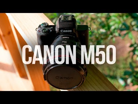 Canon EOS M50 The BEST BUDGET CANON CAMERA | M50 REVIEW