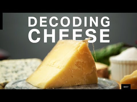 Decoding cheese with DNA sequencing