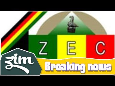 Snakes, Lions banned by ZEC on the logo | Breaking News