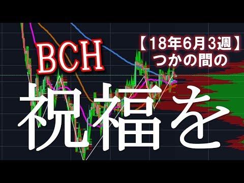 【BCC/BCH】6月3週ビットコインキャッシュ展望 安息の日曜日にせめてもの祝福を(´・ω・`)