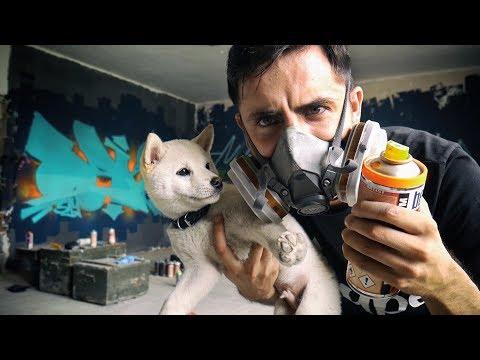 Doge did Graffiti
