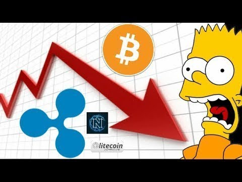Cryptocurrency CRASH! I AM NOT Worried And this is Why!