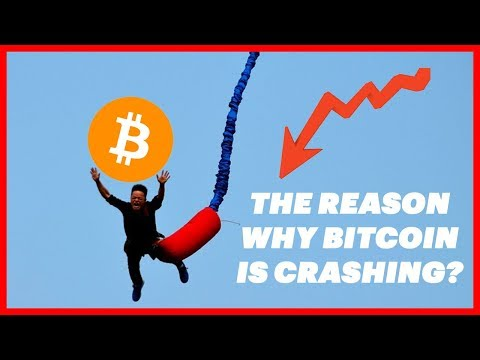 This Is Why Is Bitcoin & Cryptocurrency Crashing (My Personal Opinion)