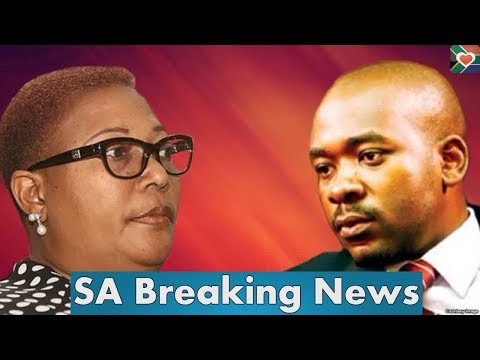 LOOK! Chamisa writes to ZEC: Nelson Chamisa and Thokozani Khupe fight latest