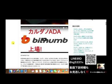 グダグダ動画 渡辺水華さん激推しカルダノADA記事の翻訳の紹介たかっさんの暗号通貨ライフ
