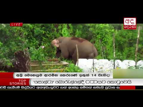 Ada Derana Prime Time News Bulletin 06.55 pm – 2018.06.18