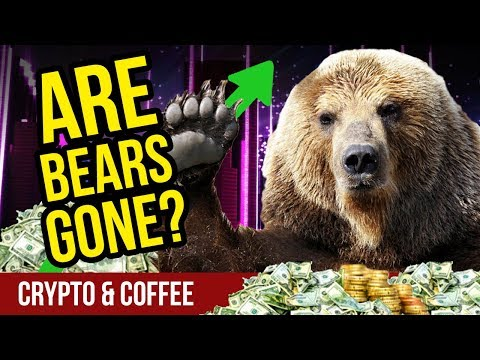Are the Bears Gone? – CryptoCurrency Market News – Crypto Market News