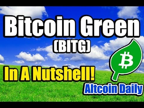 Bitcoin Green (BITG): An Environmental Cryptocurrency – In a Nutshell!!
