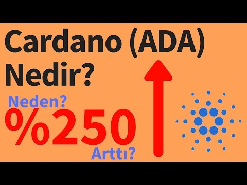Cardano (ADA Coin) Nedir? Cardano Daha Yükselir Mi?