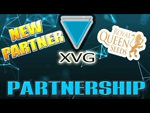 Verge (XVG) NEW PARTNER! Will it MOON? Nahhh