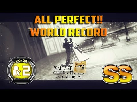 Waltz of Doge CO-OP X2 / Double Performance | All Perfect!! (SS) WORLD RECORD!! | Live Action Play ✔