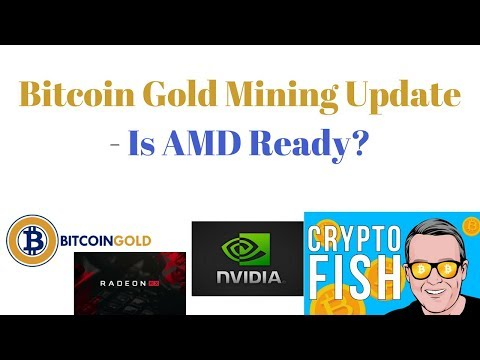 Bitcoin Gold Mining Update – Is AMD Ready?