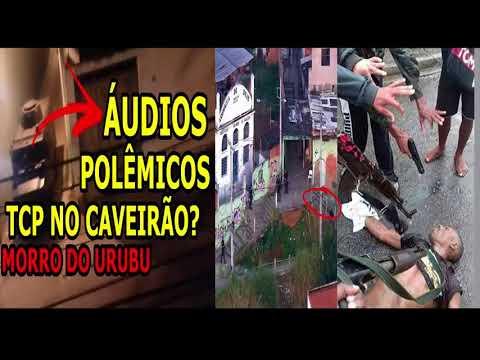 🆑ÁUDIOS TCP SAO CARLOS COMEMORANDO INVASÃO URUBU ADA