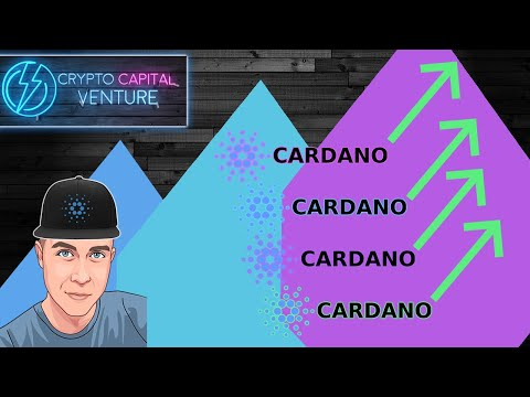 Cardano News & Price Update – Bullish