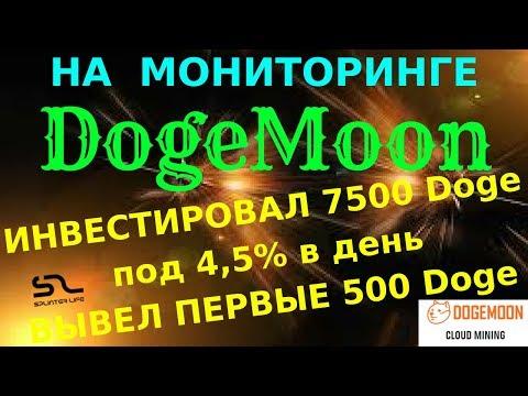 ЗАРАБАТЫВАЮ ПО 340 Doge В ДЕНЬ НА #DogeMoon