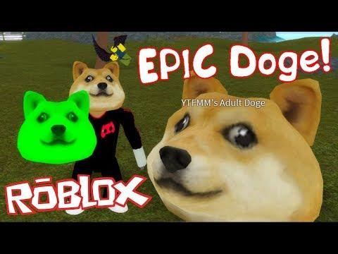 Выращиваю эпичную собаку в Роблоксе Grow and Raise an EPIC Doge