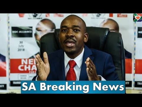 With Zanu PF Minister reports, Nelson Chamisa speaks on ZEC boss Priscilla Chigumba's relationship