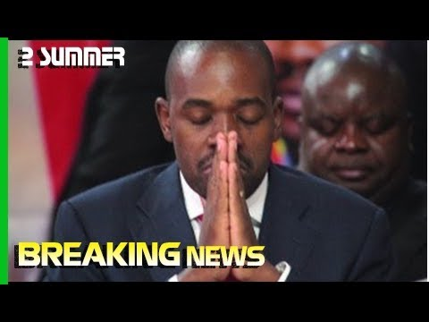 MDC Alliance presidential candidate Nelson Chamisa in trouble, ZEC reports him to police | 2 Summ…