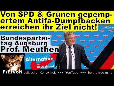 Die von SPD, DGB & Grünen gepamperten Antifa-Dumpfbacken kriegen uns nicht klein! Meuthen AfD