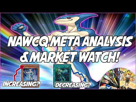Gouki WINS NAWCQ? Neo Spacian Aqua Dolphin SKYROCKETS! YuGiOh IN-DEPTH Meta Analysis & Market Watch!