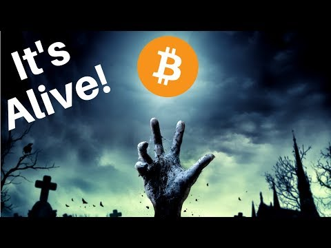 Crypto Market Jumps Again, Coinbase Custody, EOS Done Liquidating?