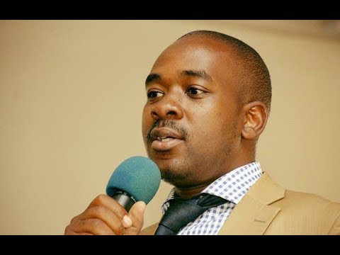 Chamisa's MDC Speaks On Withdrawal Of 6 Candidates By ZEC