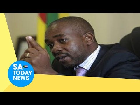 MDC Alliance and ZEC ballot paper war escalates, Chamisa reveals his party's next move