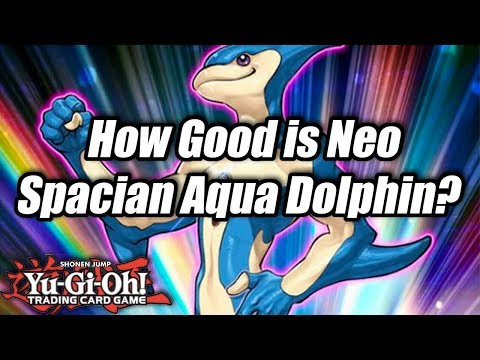 Yu-Gi-Oh! How Good is Neo Spacian Aqua Dolphin?