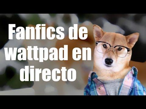 CANALES DE SUSCRIPTORES| Noches con Doge