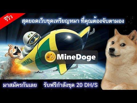 เปิดตัว MineDoge เว็บขุดเหรียญ Doge ที่มาแรงและน่าจับตามอง