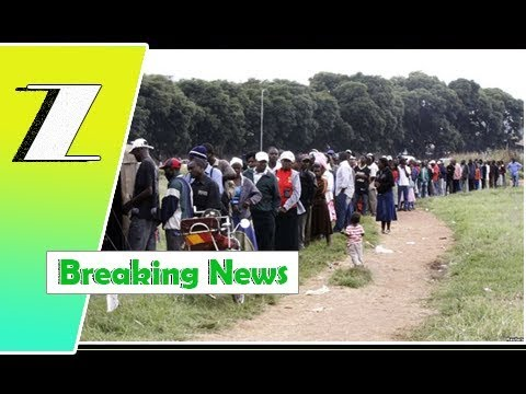 ZEC set up 11k polling stations | Breaking News