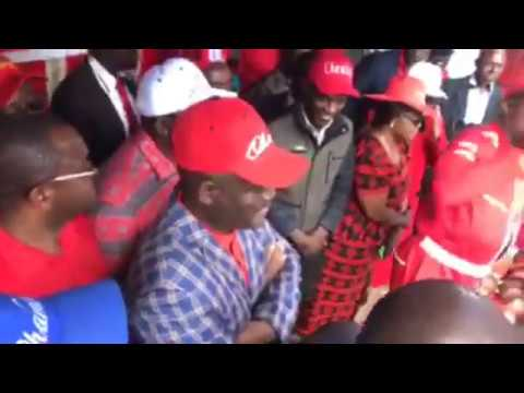 Zimbabwe: MDC Alliance March address from ZEC