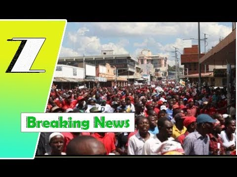 PICTURES & OTHER VIDEO: Thousands of parades against ZEC bias | Breaking News