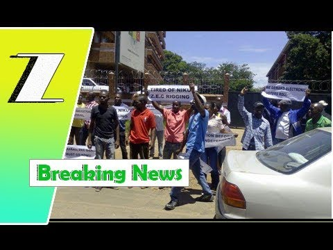 Itai Dzamara was the first to oppose the ZEC but was ignored | Breaking News
