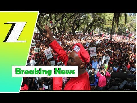 """We will camp at ZEC if our needs are not met:"" Chamisa 