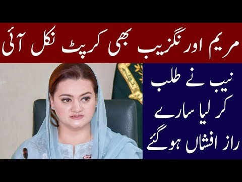 Now Its Time For Maryam Aurangzeb To Get Disqualify ? Neo News