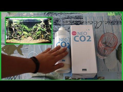 COMO instalar CO2 en mi ACUARIO PLANTADO: REFILL NEO CO2 || AquaTips