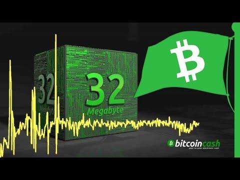 365 Days: Bitcoin Cash Mining Profitability