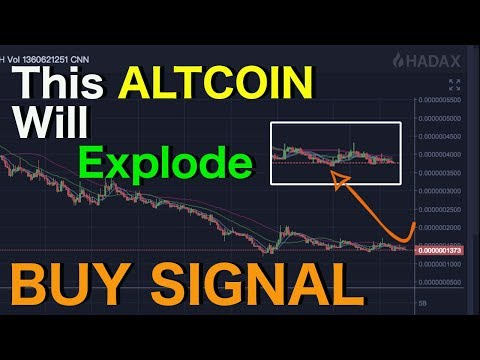 Secret ALTCOIN Buy Signal Revaeled | Top ALTCOIN picks August | Undervalued Cryptocurrency