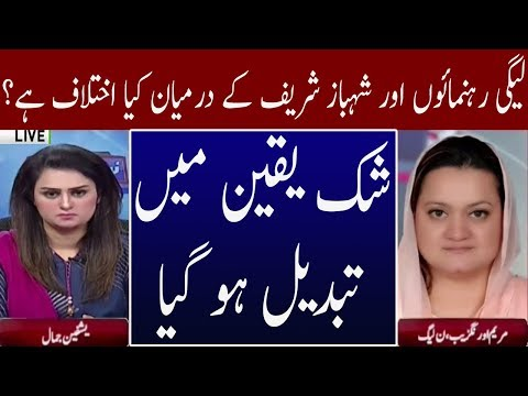 Crises in PMLN Fully Exposed | Neo News