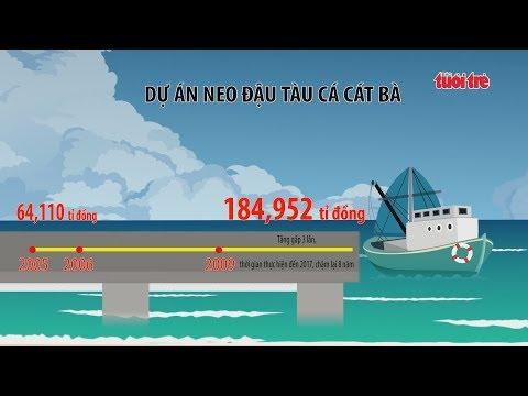 Lãng phí trăm tỷ từ một khu neo đậu tàu thuyền tránh trú bão