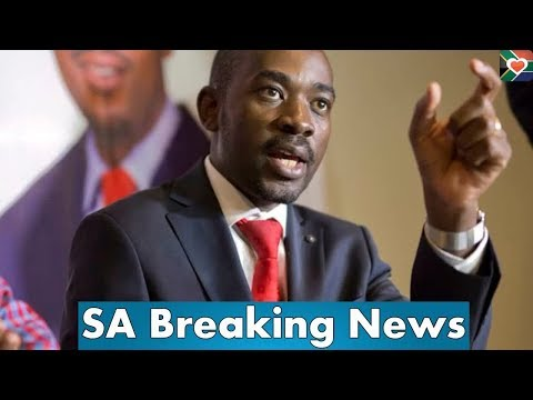 ZEC and Zanu PF in trouble, MDC Alliance leader Nelson Chamisa submits more rigging evidence