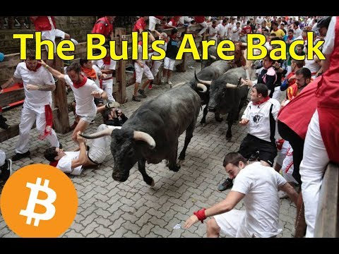 The Bulls are Back – Daily Bitcoin and Cryptocurrency News 8/17/2018