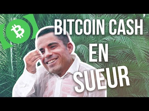 BITCOIN CASH – UNE FAILLE CRITIQUE
