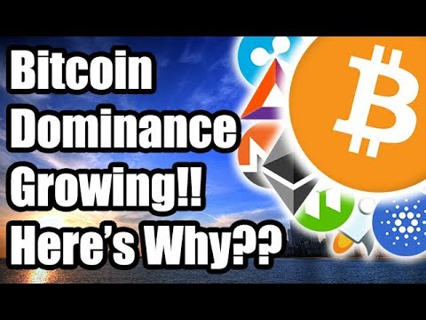 Why Is Bitcoin Dominance Increasing?? Why Are Altcoins Being Drained?? [Cryptocurrency News]